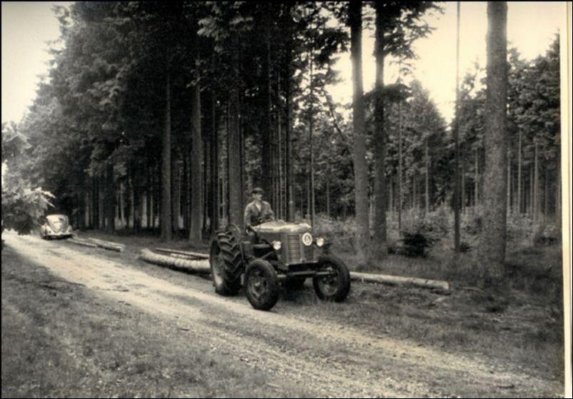 udslæbning af tømmer med plantagens traktor