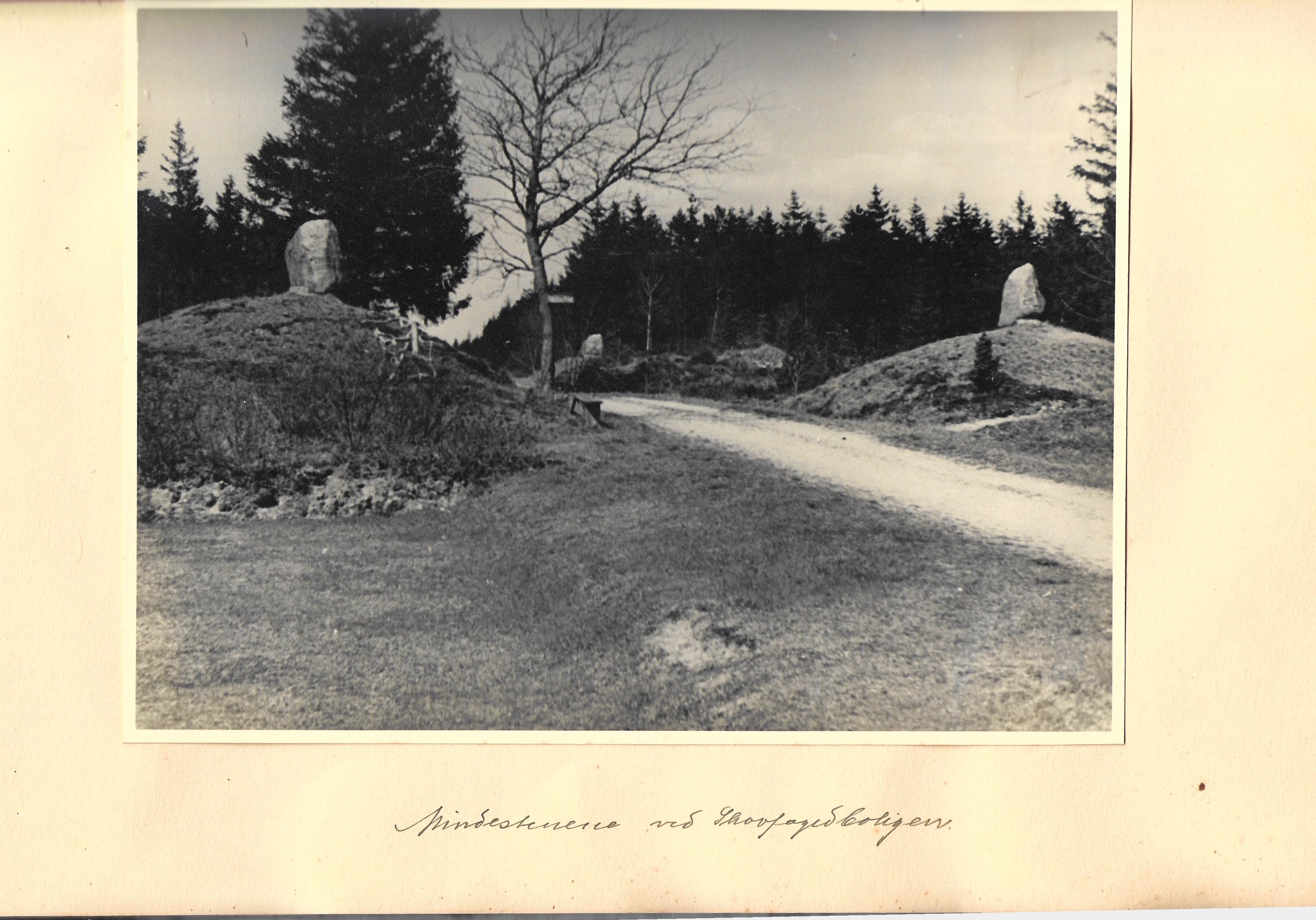 hovborgplantage_bog-0033