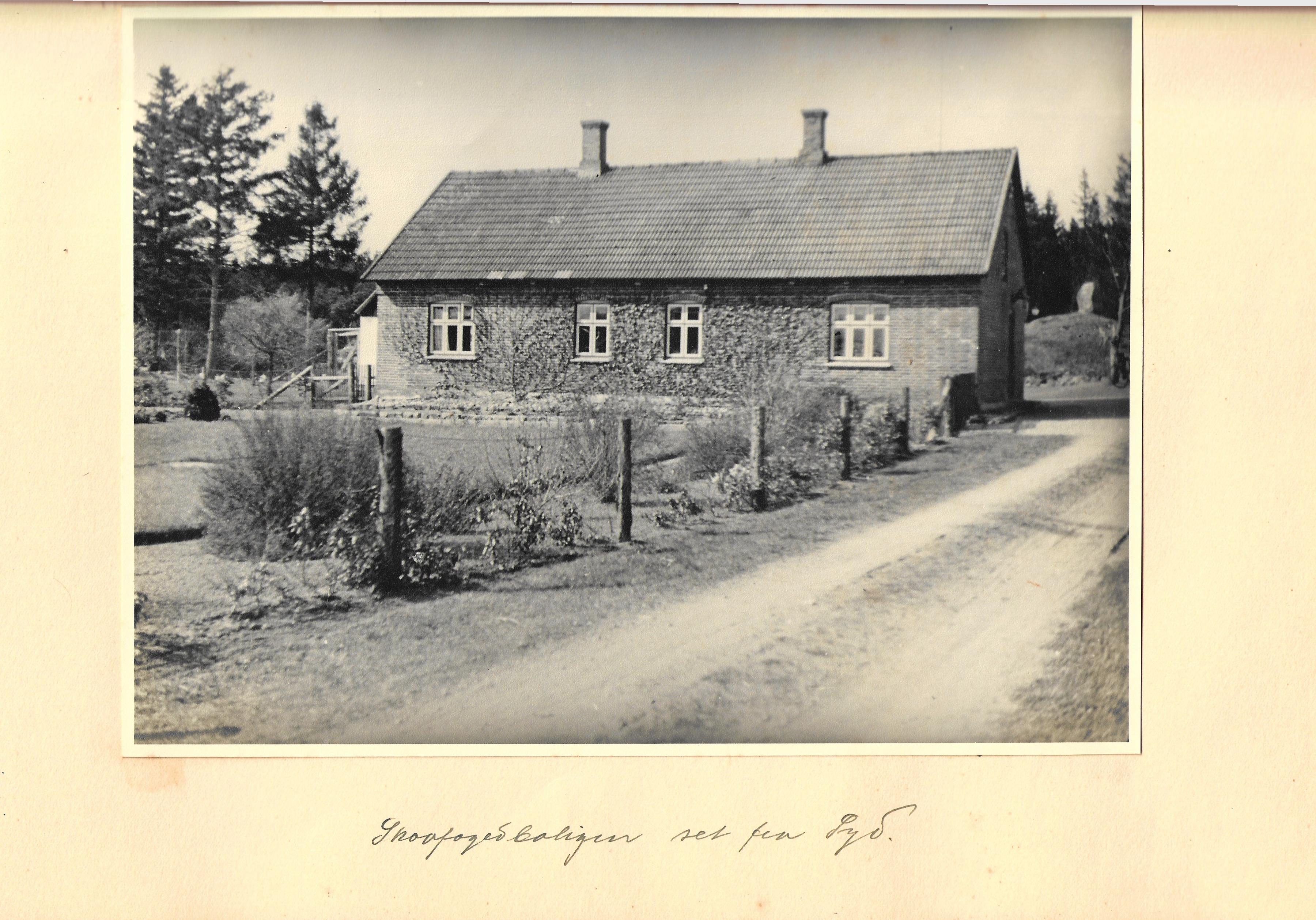 hovborgplantage_bog-0034