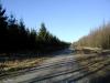 et kik fra skovfogedboligen mod nord